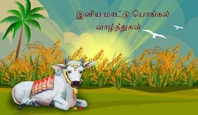 Mattu Maatu pongal wishes valthugal in tamil - tamilsmsquotes.blogspot.com