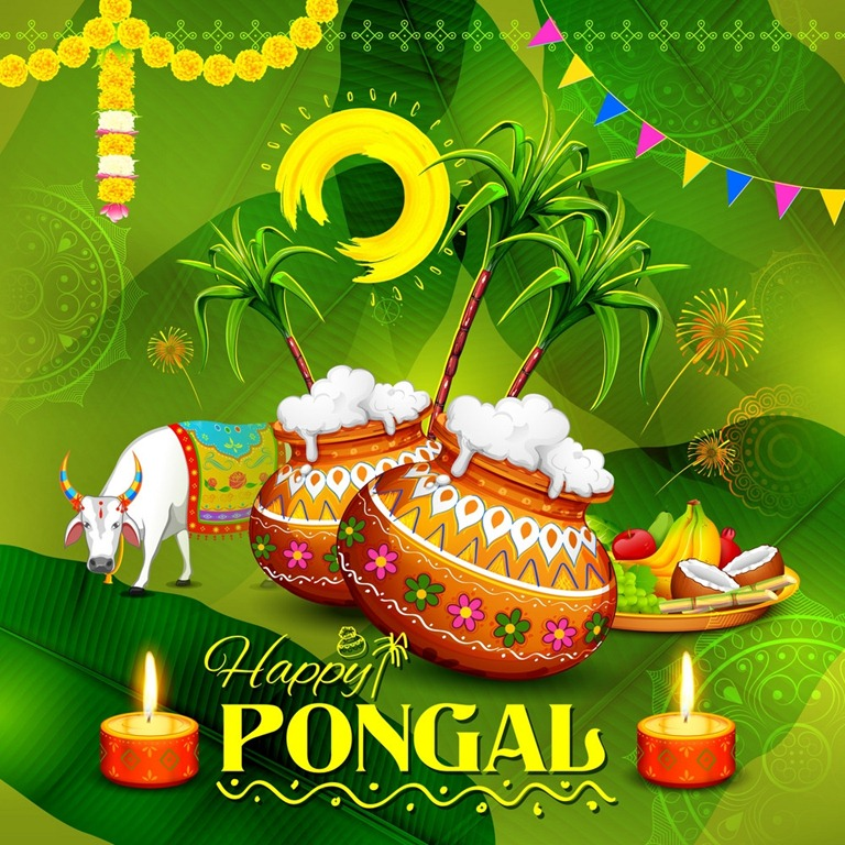 happy-pongal-greeting-background-vector-12230593